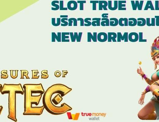 SLOT TRUE WALLET บริการสล็อตออนไลน์ ยุค New Normol
